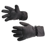 GL10 Waterproof Ski Gloves